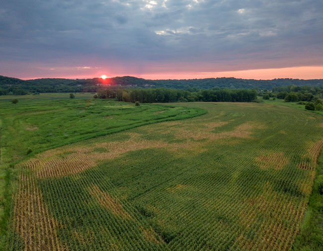 Agriculture Beauty In Nature Cloud - Sky Environment Field Grass Green Color Growth Land Landscape Nature No People Outdoors Plant Rural Scene Scenics - Nature Sky Sunset Tranquil Scene Tranquility Tree