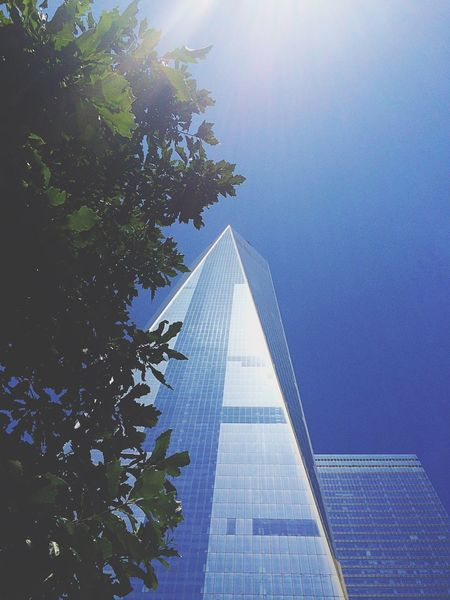 Looking up & be grateful Structures NYC Street Photography Streetphotography EyeEm Best Shots Taking Photos New York City NYC Photography Newyork Freedomtower Oneworldtradecenter