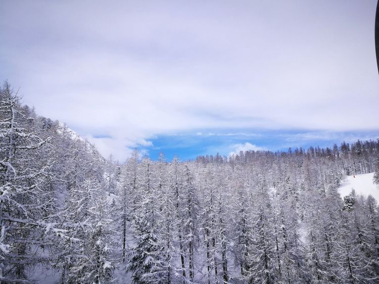 Snow ❄ Beauty In Nature Cloud - Sky Cold Temperature Mountain Nature Outdoors Snow Snowcapped Mountain Tree Winter