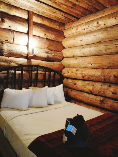 Log Cabin Interior Wooden Wooden Wall Indoors  Roundwood Round Wood Sofa Home Showcase Interior No People Home Interior Architecture Pillow Modern Living Room Bedroom
