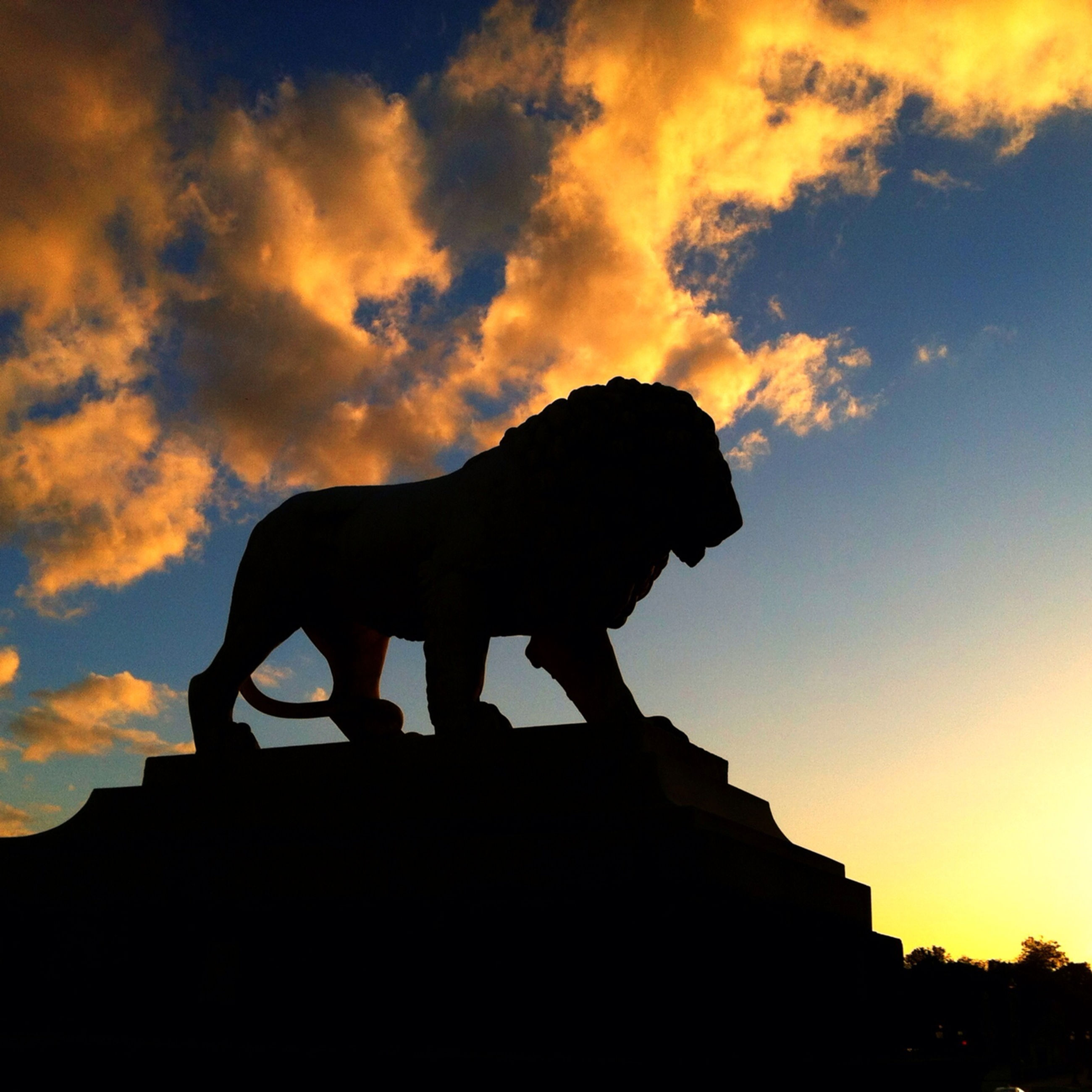 sunset, silhouette, sky, low angle view, cloud - sky, built structure, architecture, animal themes, one animal, building exterior, cloud, mammal, orange color, horse, cloudy, statue, sculpture, outdoors, domestic animals, dusk