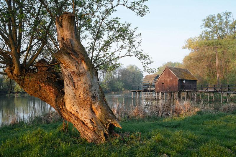 Wheel wattermill from 1840 year... Landscape Shootermag EyeEm Nature Lover EyeEm Best Edits