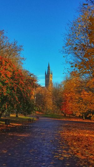 Kelvingrove Park Glasgow University Autumn Colours