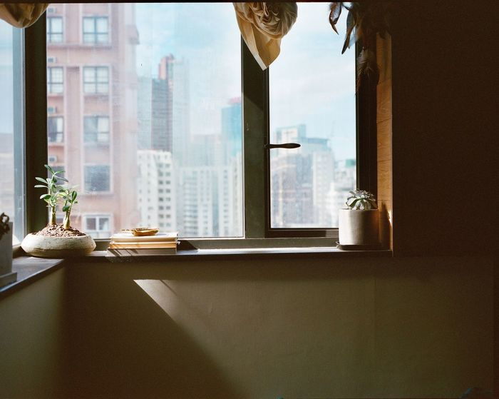 Mamiya7ii Medium Format Film Film Photography Window Indoors  Table Day Window Sill Architecture Built Structure
