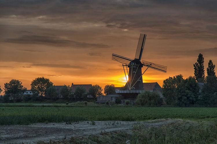 Sunset near Oude Molen Netherlands Landscape Dutch