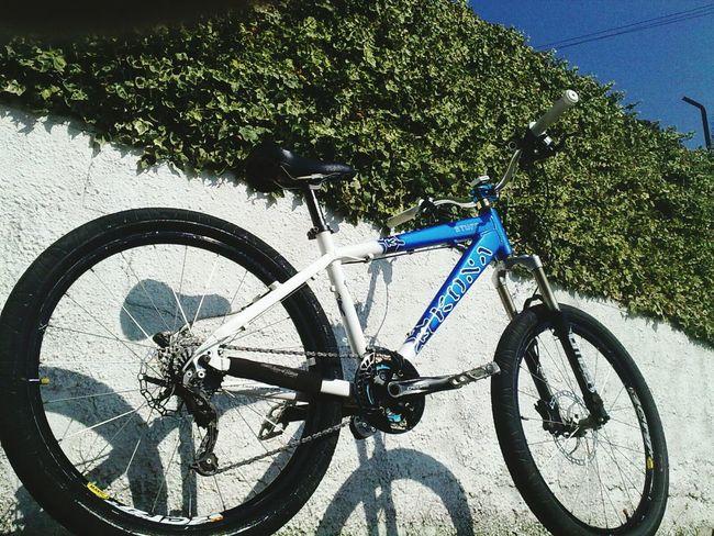 Minha Bicicleta Andre Esmoriz Portugal Mybikeride