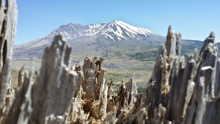 Mountain View Washington State Mt. St. Helens  Volcano