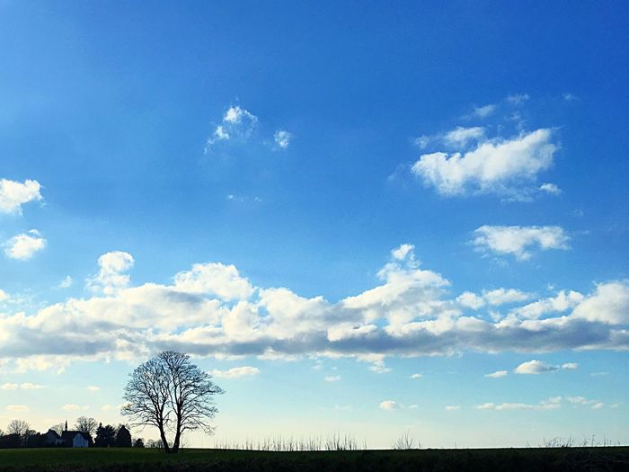 Sky, Tree, Cloud Cloud - Sky Sky Outdoors Nature Day Blue No People Beauty In Nature