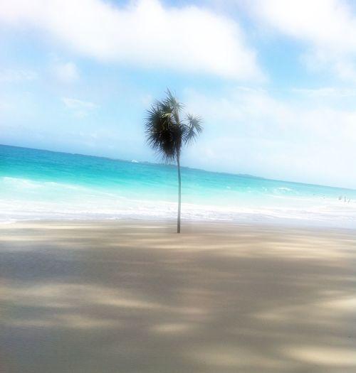 Take me back to paradise Pic From My Cruise Bahamas Eye4photography Beach