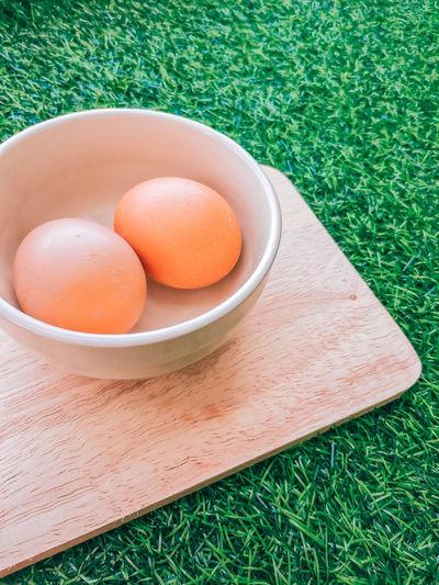 High angle egg on the grass