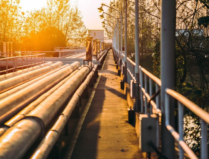 Autumn tail Railing Tree Bridge - Man Made Structure Autumn Outdoors Built Structure Sunlight Footbridge City Winter Architecture Sunset Nature Day No People Cold Temperature Building Exterior Beauty In Nature Sky