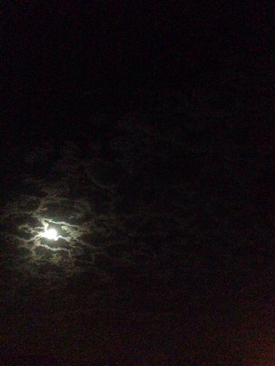 Bocca baciata non perde ventura anzi rinnuova come fa la luna Moonlight Hopefull