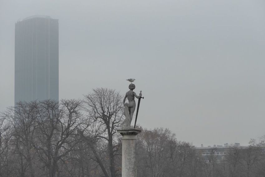 Statue Architecture City Bird Outdoors Paris, France  Jardin Du Luxembourg