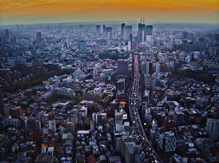 City may look