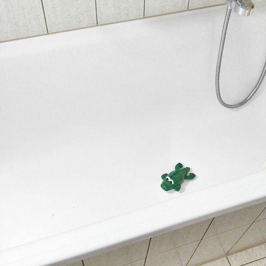 Indoors  No People Crocodile Bath Barhroom Green Color White White Color