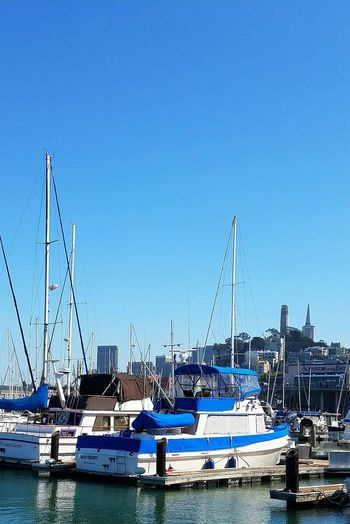 Nautical Vessel Boat Harbor Clear Sky Sailboat Waterfront Sunny Day San Francisco Pier 39 Coit Tower Transamerica Building Tourist In My Own City