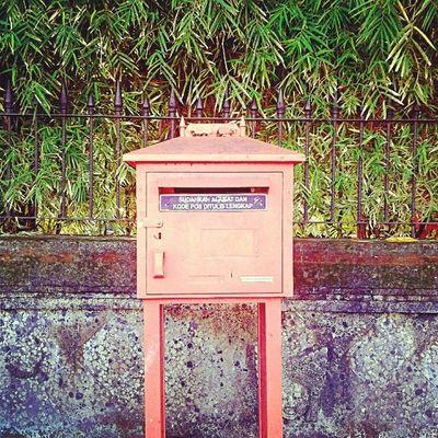 www.forgotten.mail Mailbox Orange Mail Vintage Oldbuilding Instadaily Instatoday Instapop Instagood Instanesia Instafamous Instanusantara Instanusantarabali Igers Bali INDONESIA LangitbaliPhotoworks