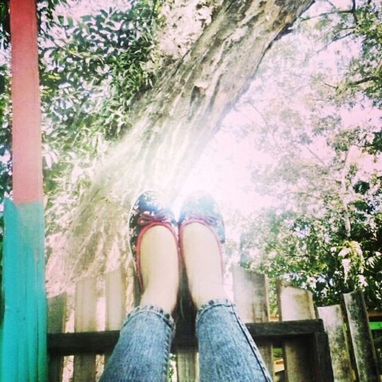 Shoes and Nature