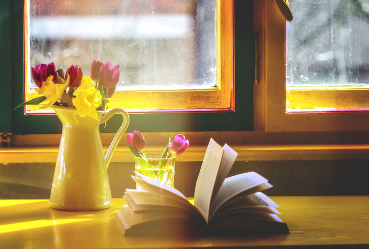 Book Day Flower Fragility Learning Nature No People Window