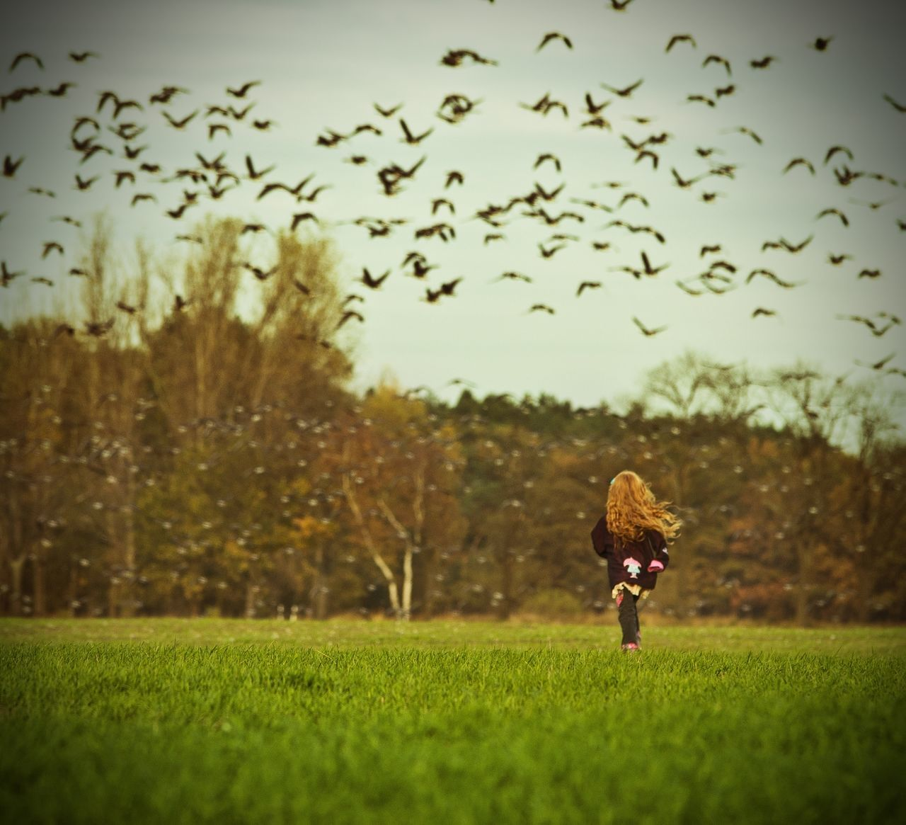 grass, childhood, field, nature, outdoors, one person, growth, sky, landscape, full length, flying, real people, tree, beauty in nature, day, bird, people