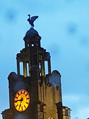 Travel Destinations Bird Archival No People Outdoors Architecture Time Clock Clock Face Statue Animal Themes Day