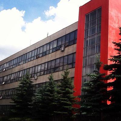 Новый колледж