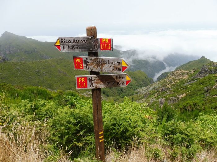 Where to go? Mountain Outdoors Cloud - Sky No People Landscape Landschaft Madeira Madeira Island Pico Ruivo Nature Natur Wegweiser  Sign Berge Bergwelten Mountain View Mountain Hiking Hiking Wanderlust Wandern Funchal Sky Plants Pflanzen Waymarking Lost In The Landscape EyeEmNewHere