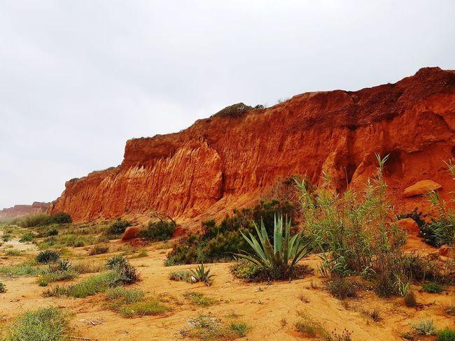 Desert Rock - Object Red Rock Formation Sky Landscape Eroded Geology Sand Dune Rugged Sandstone