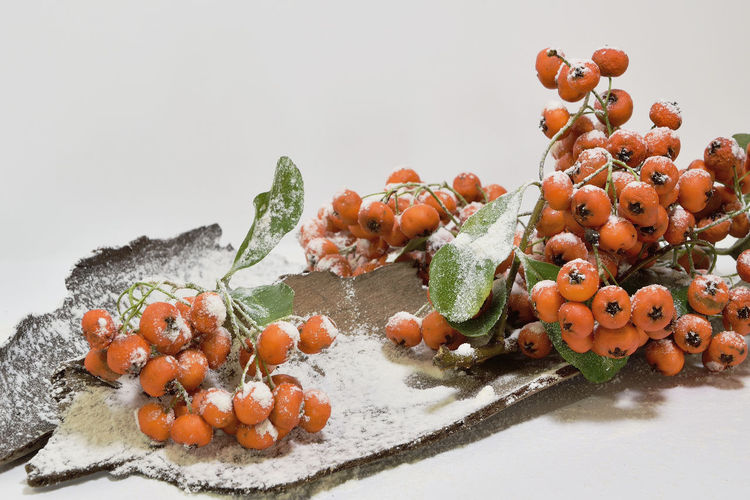 Berries Christmas Close-up Decoration Decorations Food Freshness Frozen Handmade For You Icy Italy Nature No People Plant Red Snow Winter Xmas Xmas Decorations