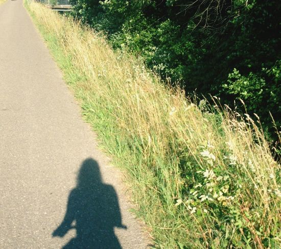 Bike Sun Lignes Shadow Afternoon Saturday