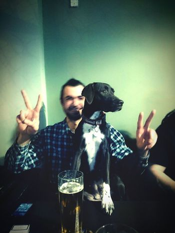 Czech Republic Prague Time For Drinks Great Time With Friends Expreessions Dog Expression Peace And Quiet Beer Time Beer & Dog Be Careful Small Koala)