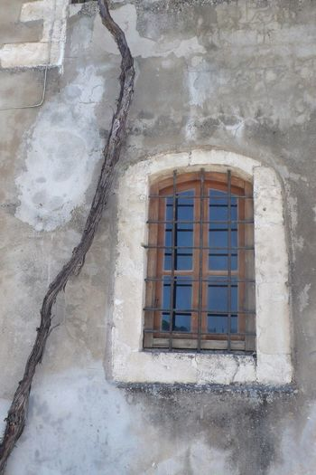 Built structure with windows