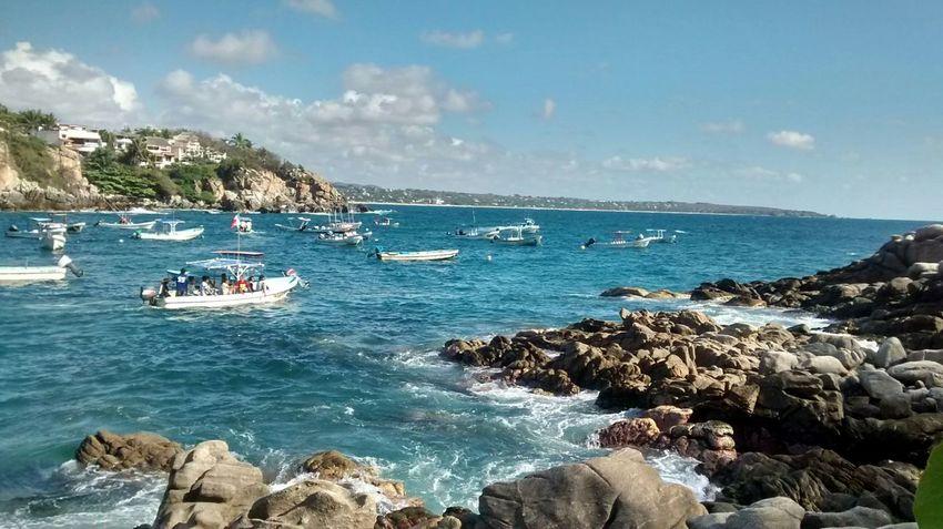 Showcase: January Mi Hermoso Oaxaca Mexico Puerto Angelito Enjoying Life Torneo De Pez Dorado