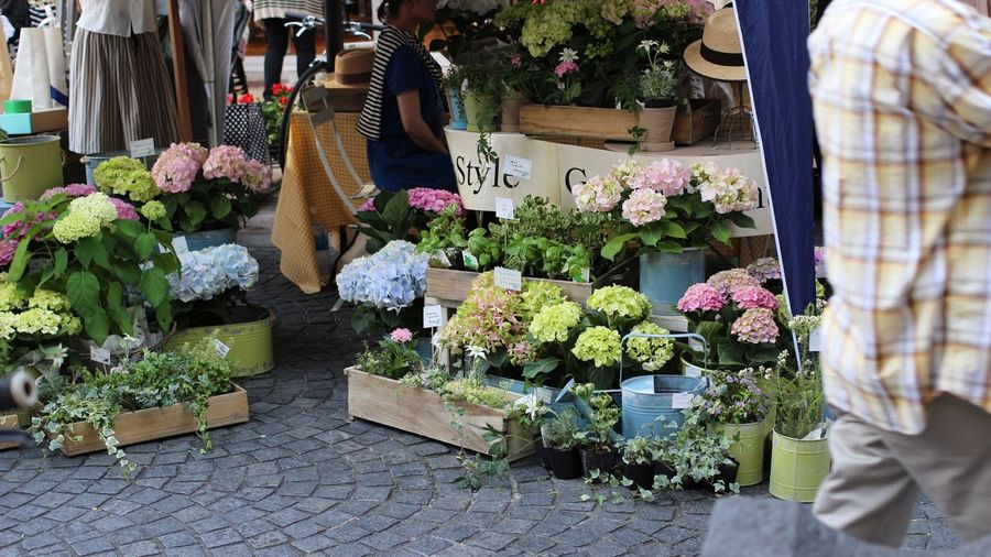 SHIZUOKA CANNES WEEK Small Business Choice People Flower Market Lifestyles Day 길거리 마켓 사람 꽃 생활 Life 어느날에 しずおか Shizuoka, Japan