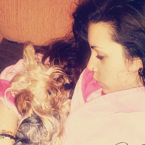 Estamos malitas! :(. Jou Jueves Thursday Night pink yorkshire mipequeña nala dog que mala estoy solo mantita y tele instanight instame instalove instadog instasleep instapic instagood picoftheday goodnight