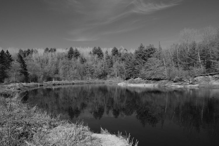 Québec Canada Quebec Canada Photos Canada L'AssomptionRiver Blackandwhite Day Forest Fujifilm X-t20 Fujifilm_xseries Non-urban Scene Outdoors Reflection Reflection Lake River Scenics - Nature Tranquility Tree Reflection Cloud - Sky Beauty In Nature Water No People WoodLand