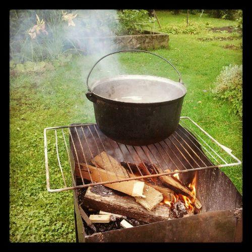 Boiling turtle soup Instasoup