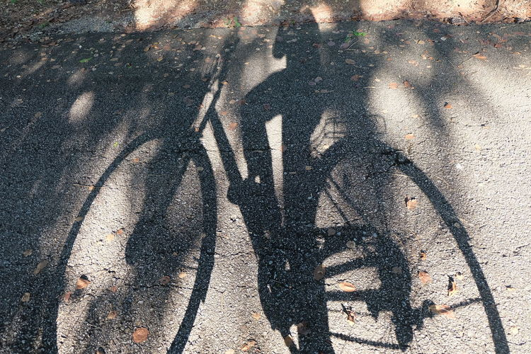 Shadow Bicycle Transportation Real People Sunlight Road City Street Lifestyles High Angle View Mode Of Transportation Nature Day Men People Land Vehicle Focus On Shadow Group Of People Leisure Activity Unrecognizable Person Riding Outdoors