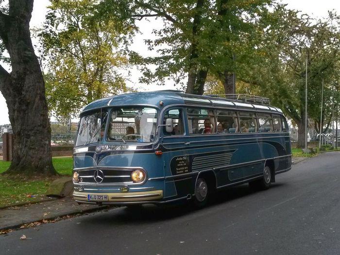 Vintage Bus Bus Oldtimer Vintage Mercedes-Benz