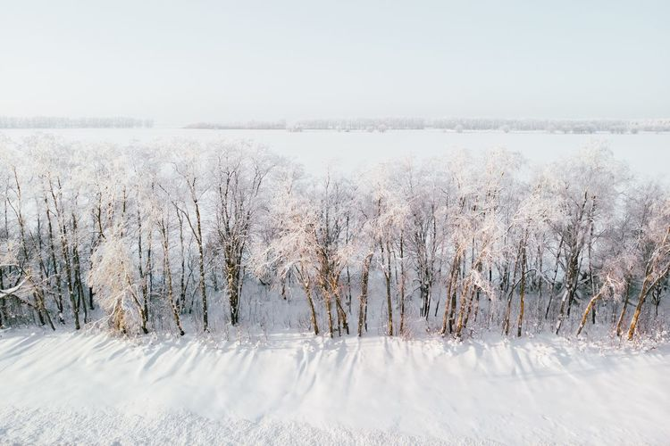 Road Saint Petersburg Winter Trip Winter Snow Cold Temperature Nature Beauty In Nature Day Scenics - Nature Sky No People White Color Frozen Outdoors Extreme Weather Landscape My Best Photo