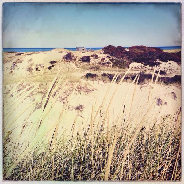 Artists Dune Shack Massachusetts Ocean Beach Enjoying The Sun