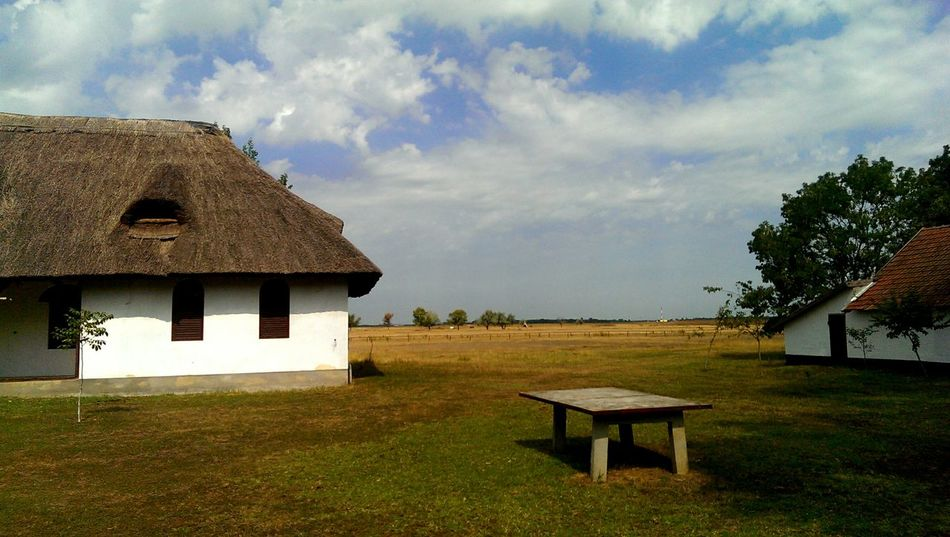 Hungary Country Gyula Country Life Plains Country in Hugary