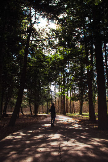 Full length of woman walking in forest