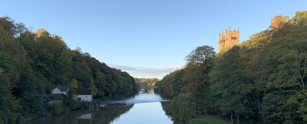 Panoramic view of river amidst trees against clear sky