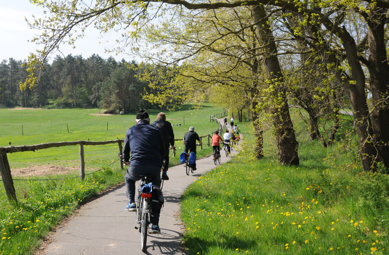 Rear View Of People Riding Bicycles On Footpath