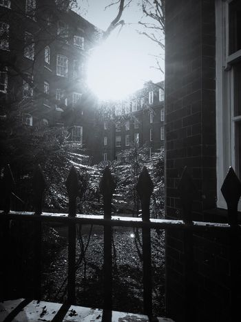 Outdoors No People Sunlight Built Structure Real People Building Exterior Architecture Silhouette Full Length Day Tree Blackandwhite Urbanphotography Blackandwhite Photography Residential Building Streetphotography IPhoneography Sunlight Glare Railing Residential District Flats Dwellings City
