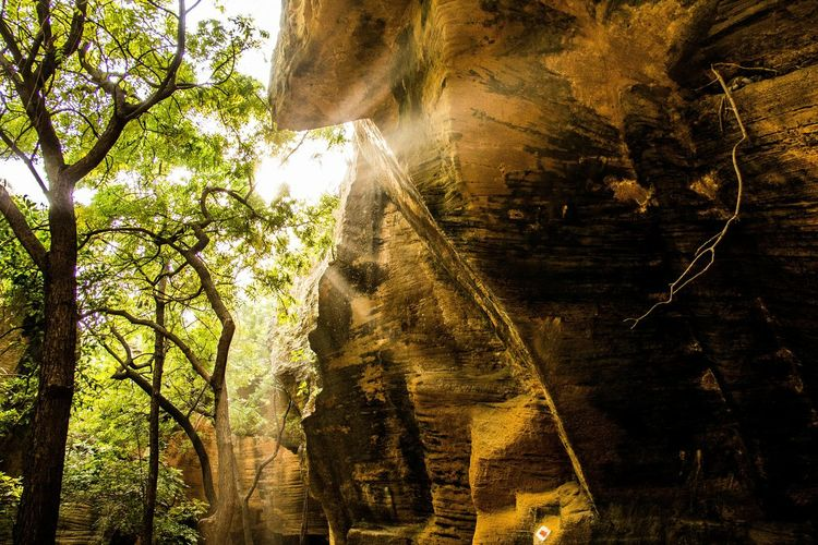 Capture Canon600D Sunrays Sunrays Through The Branches Capturing Sunrays Rock Rocks Cave Shades Shadesofsun Beautiful Nature Nature Exquisite Scenic View Scenic Shadesinthecave Cavestory Showcase: November