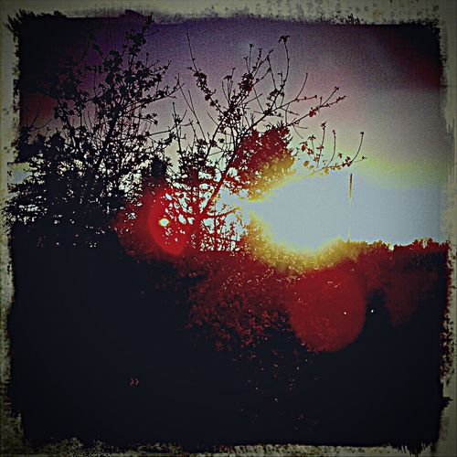 Sunset Scenics Lens Flare Majestic