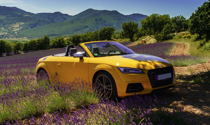 Beautifil Landscapes Convertible Car Landscape Nice Cars Sportscar Yellow, Car, Audi, TTS, Provence, Lavendel, Paint The Town Yellow The Week On EyeEm