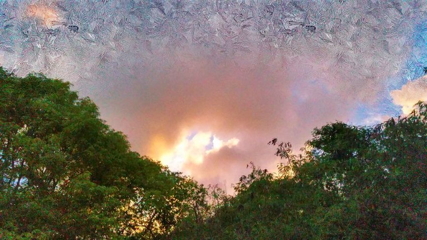 Fire and ice. Around Sunset Clouds And Sky Texture Trees St Croix, US Virgin Islands